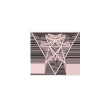 Elvyra Design